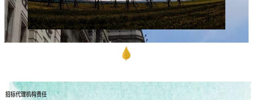 枫叶二.jpg