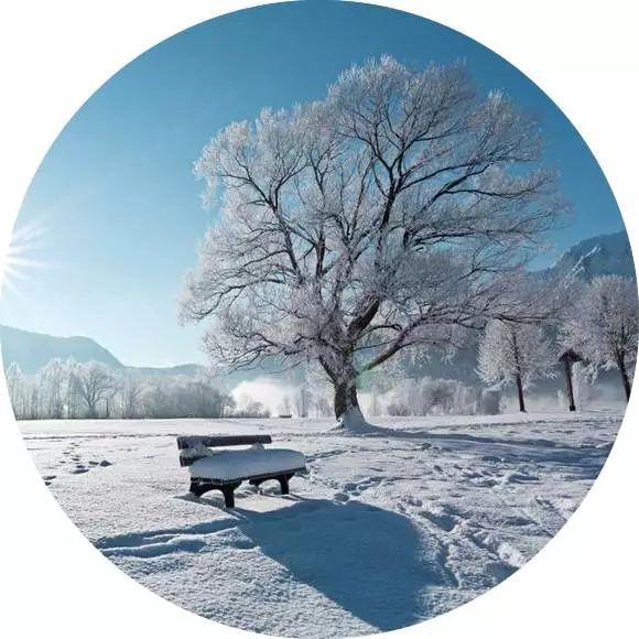 微信图片_20180101194159雪.jpg